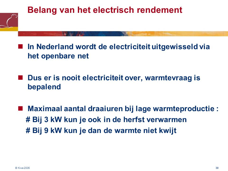 Belang van het electrisch rendement