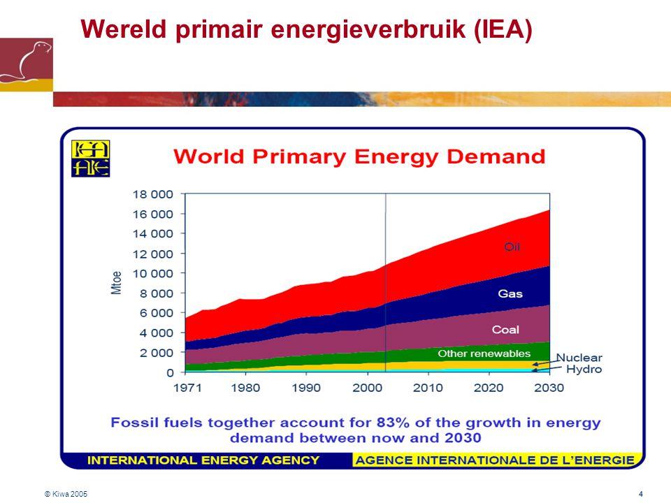 Wereld primair energieverbruik (IEA)