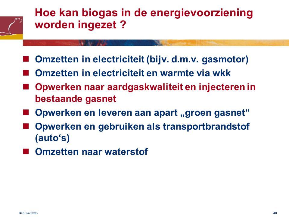 Hoe kan biogas in de energievoorziening worden ingezet