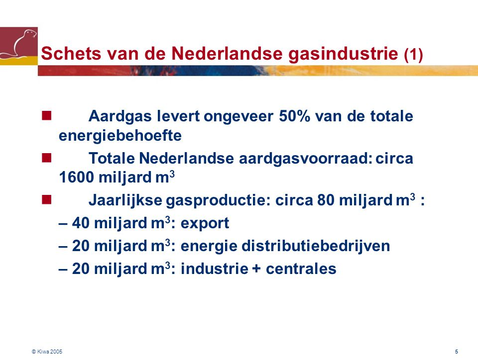 Schets van de Nederlandse gasindustrie (1)