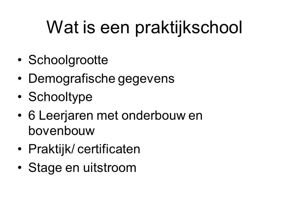 Wat is een praktijkschool