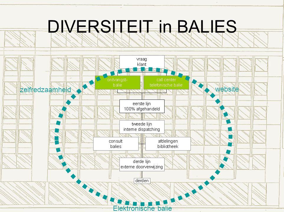 DIVERSITEIT in BALIES zelfredzaamheid website Elektronische balie