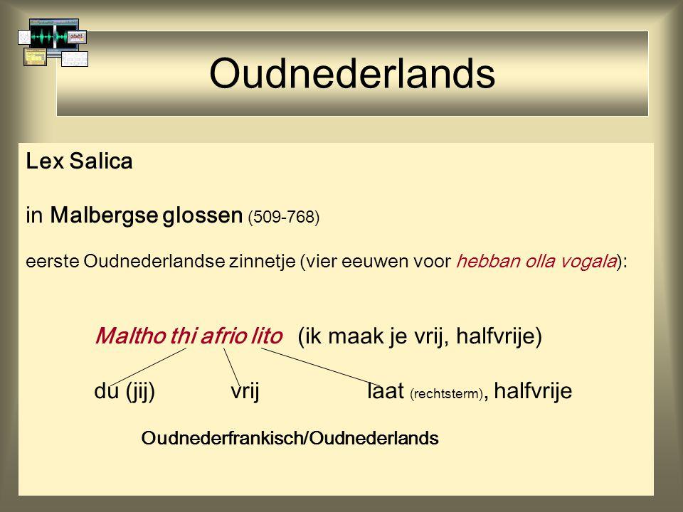 Oudnederlands Lex Salica in Malbergse glossen (509-768)