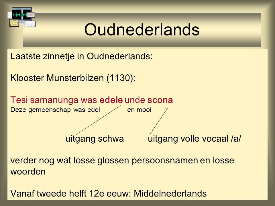 Oudnederlands Laatste zinnetje in Oudnederlands: