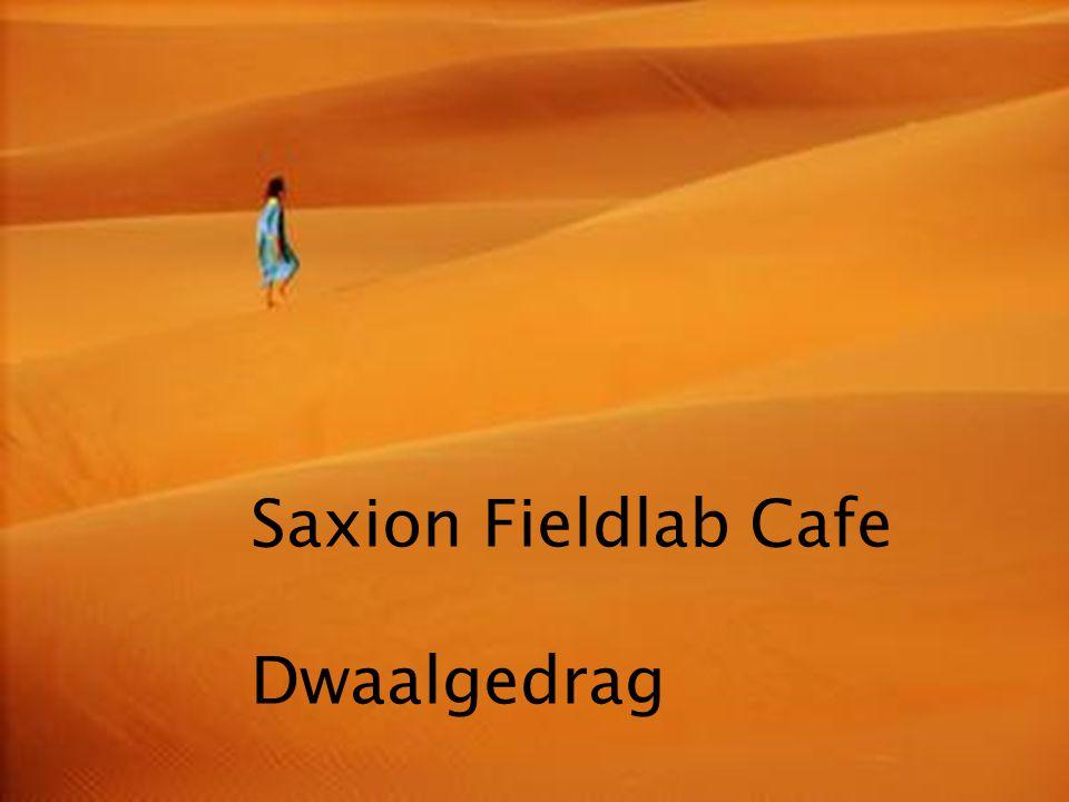Saxion Fieldlab Cafe Dwaalgedrag