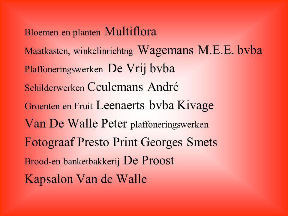 Van De Walle Peter plaffoneringswerken