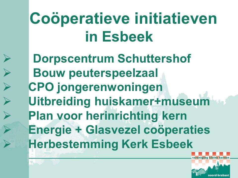 Coöperatieve initiatieven