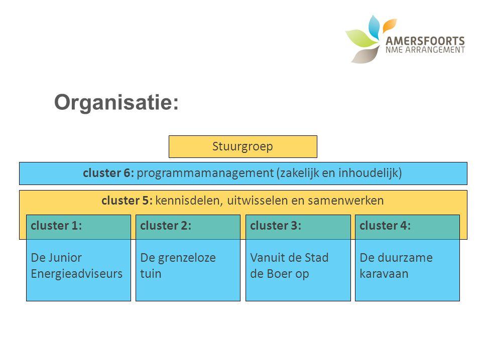 Organisatie: Stuurgroep