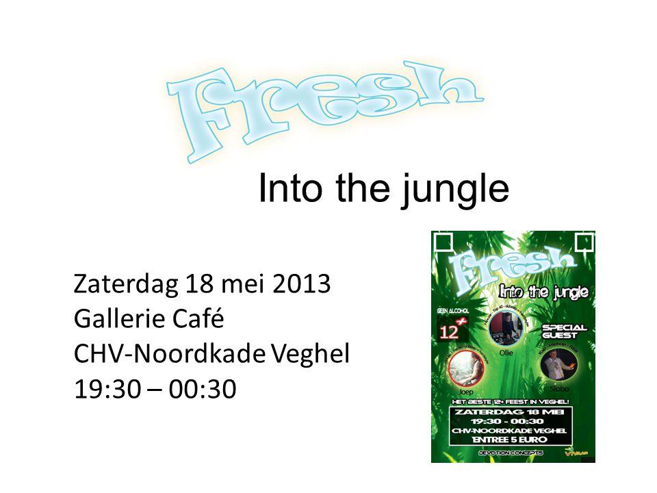 Into the jungle Zaterdag 18 mei 2013 Gallerie Café CHV-Noordkade Veghel 19:30 – 00:30