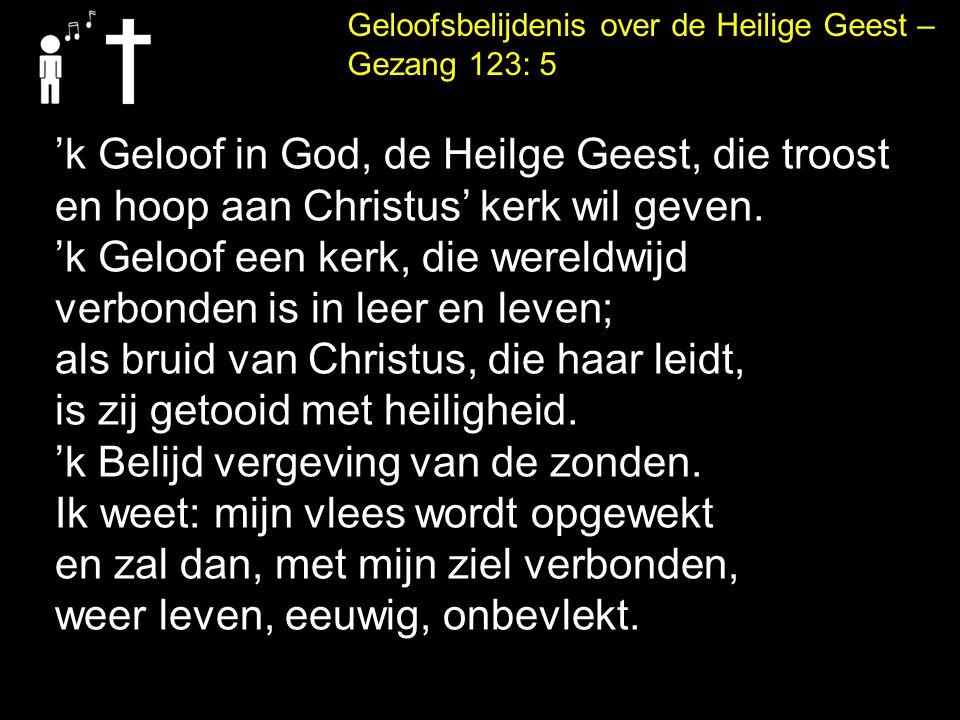 'k Geloof in God, de Heilge Geest, die troost