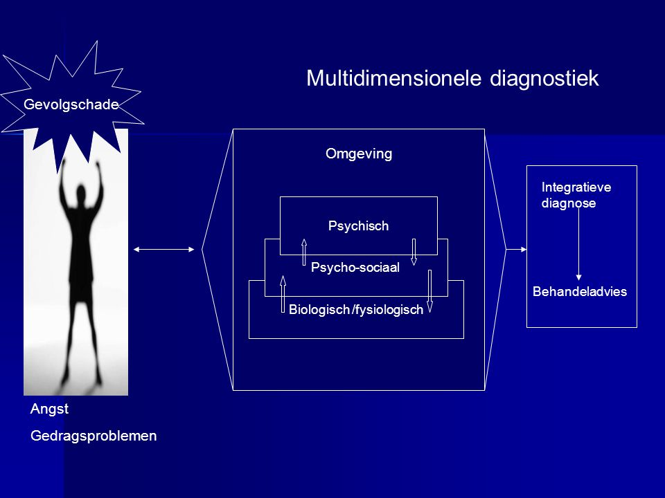 Multidimensionele diagnostiek