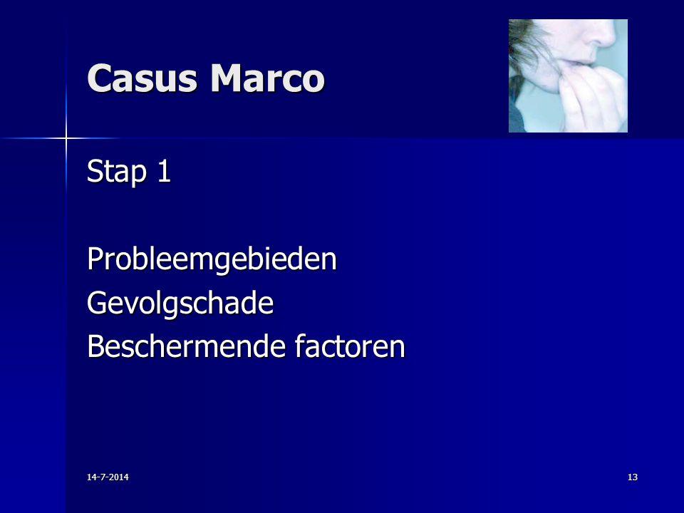 Casus Marco Stap 1 Probleemgebieden Gevolgschade Beschermende factoren