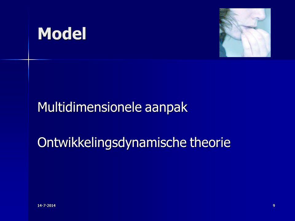 Model Multidimensionele aanpak Ontwikkelingsdynamische theorie
