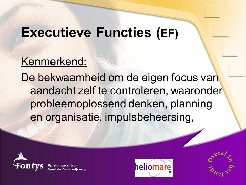 Executieve Functies (EF)