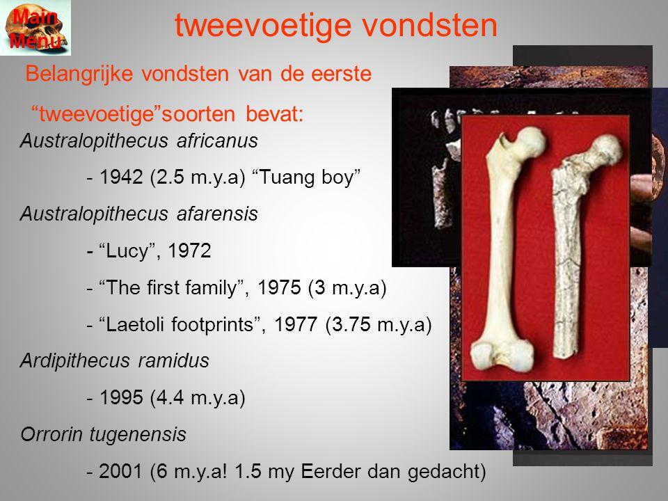 tweevoetige vondsten Belangrijke vondsten van de eerste