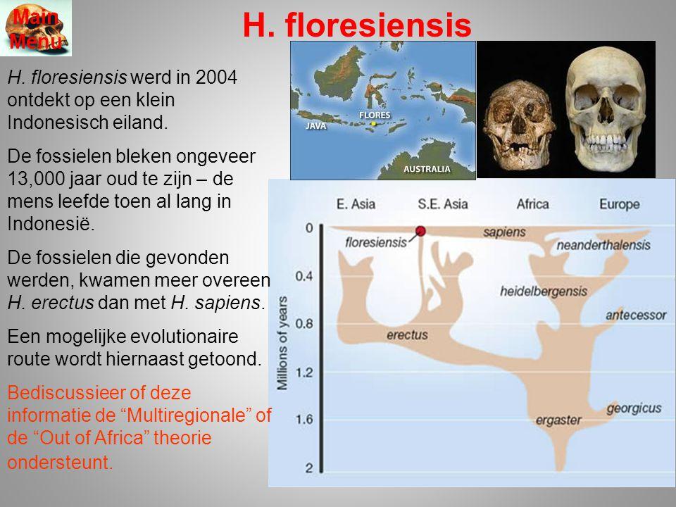 H. floresiensis Main Menu