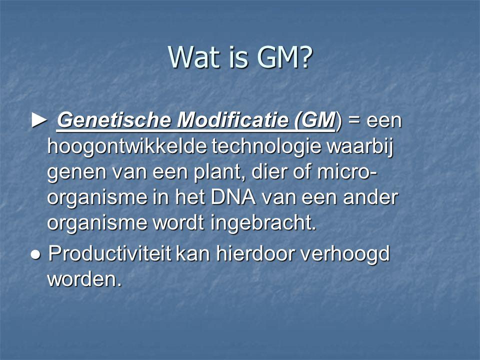 Wat is GM