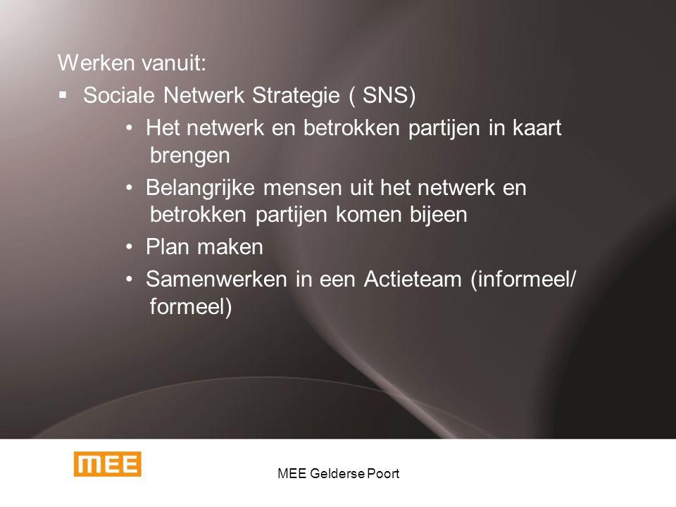Sociale Netwerk Strategie ( SNS)