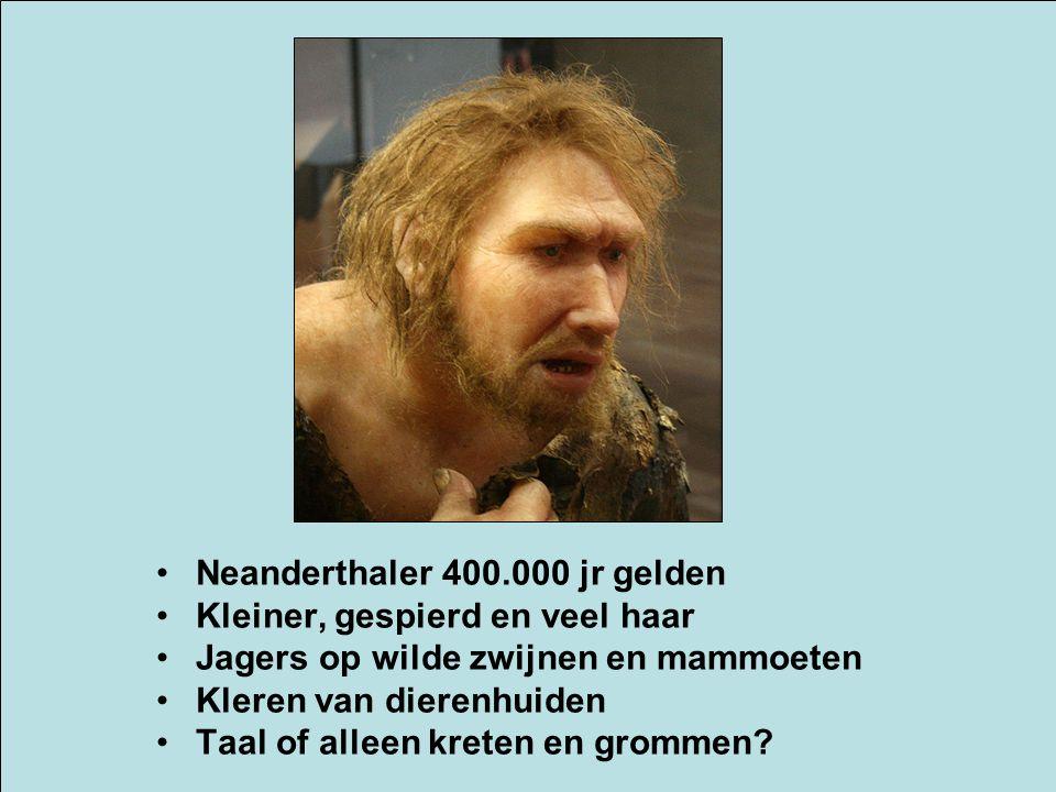 Neanderthaler 400.000 jr gelden