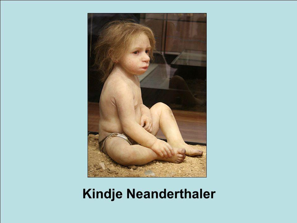 Kindje Neanderthaler