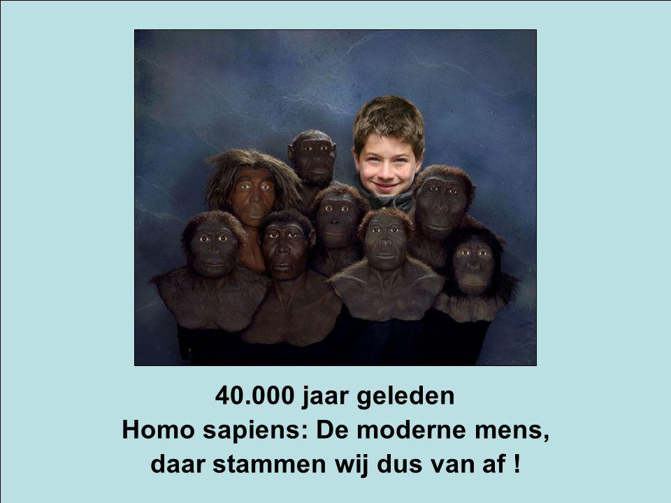Homo sapiens: De moderne mens, daar stammen wij dus van af !