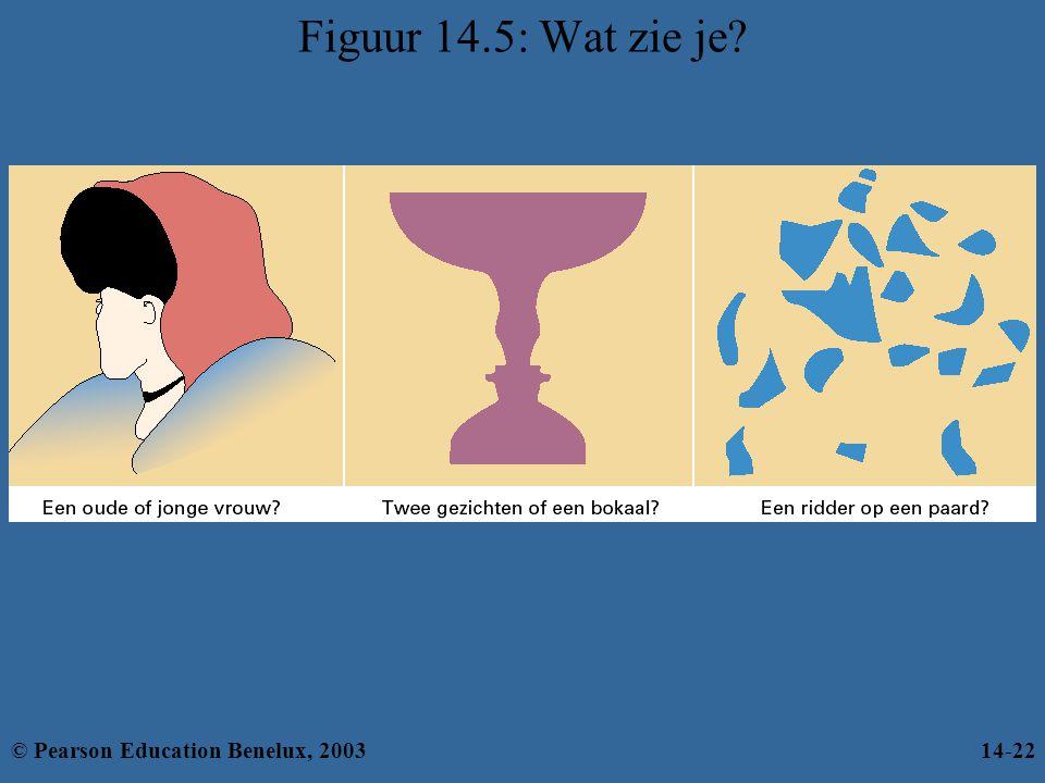 Figuur 14.5: Wat zie je © Pearson Education Benelux, 2003 14-22