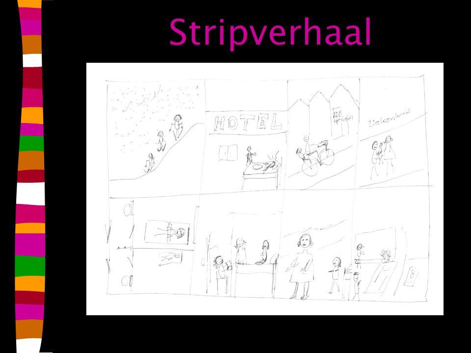 Stripverhaal
