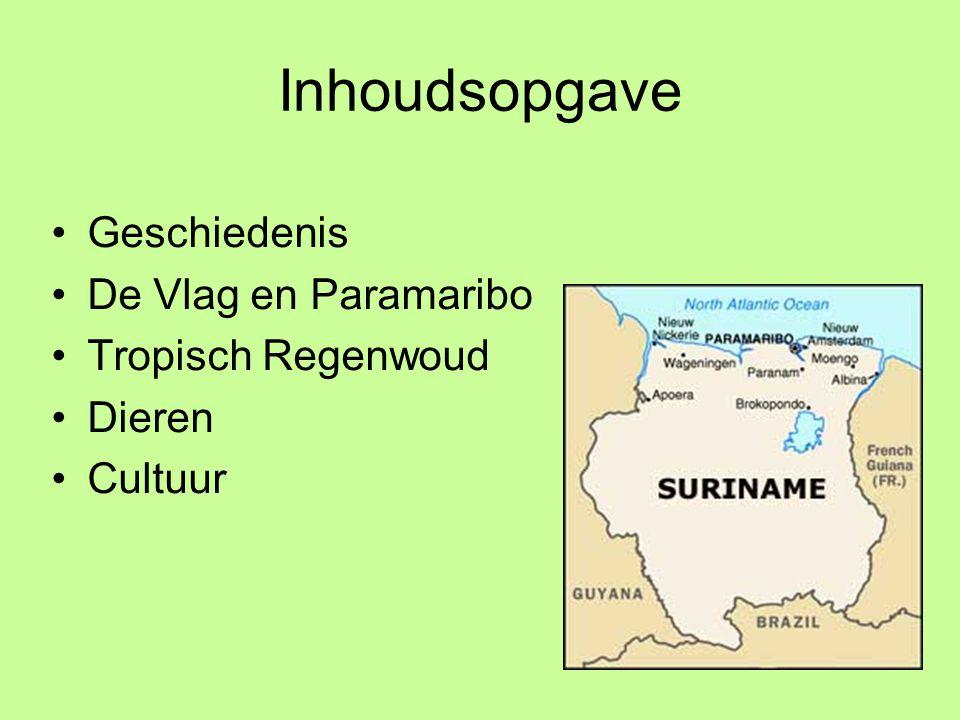 Inhoudsopgave Geschiedenis De Vlag en Paramaribo Tropisch Regenwoud