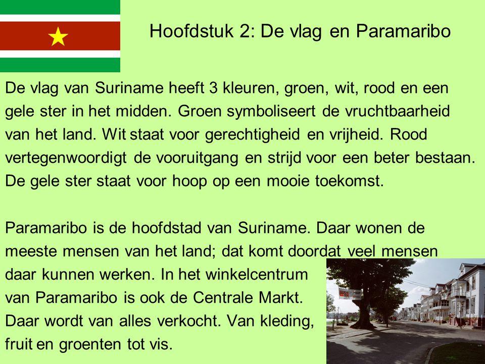 Hoofdstuk 2: De vlag en Paramaribo