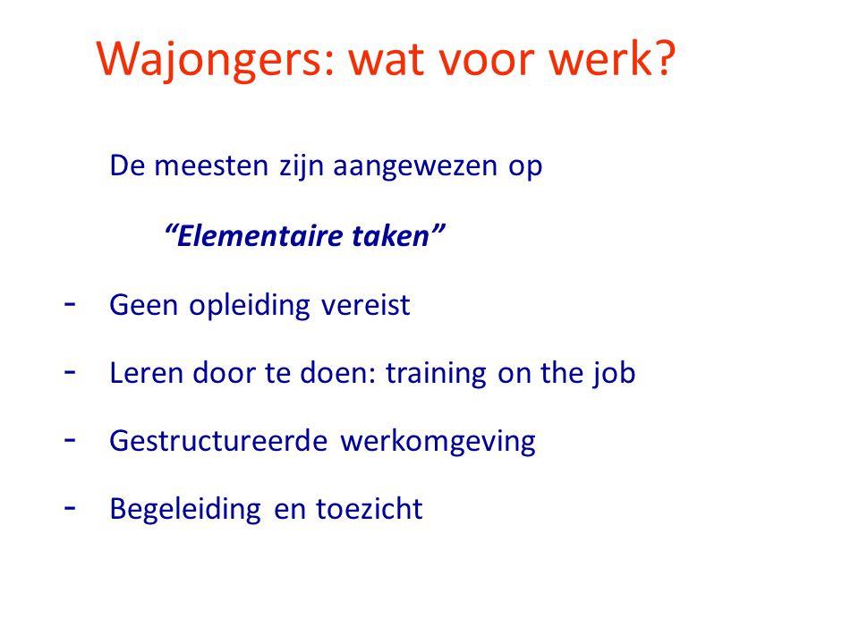 Wajongers: wat voor werk