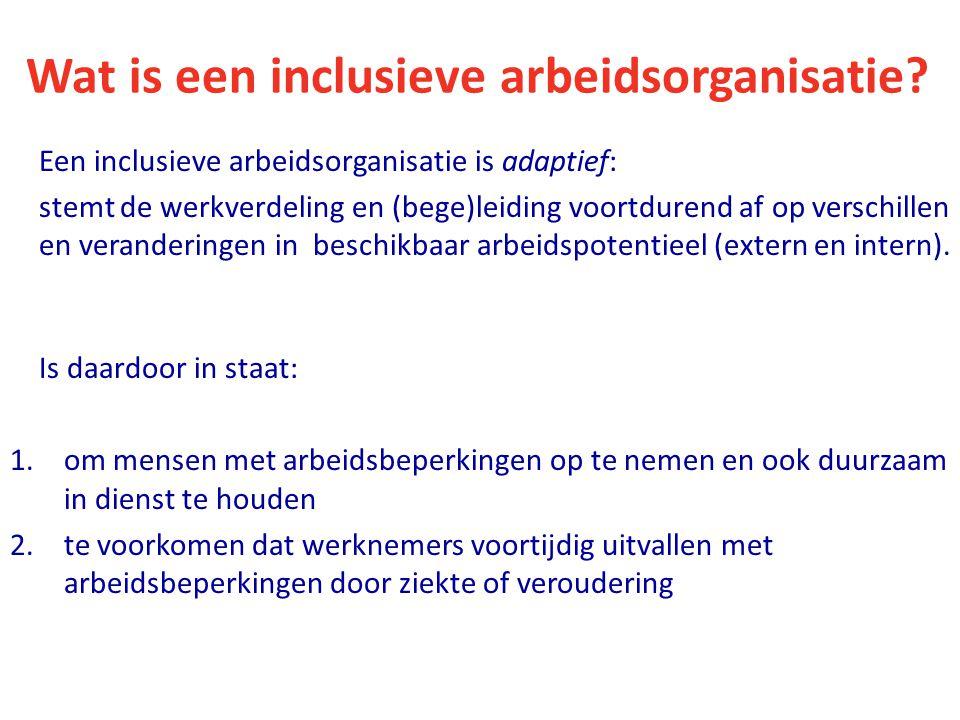 Wat is een inclusieve arbeidsorganisatie