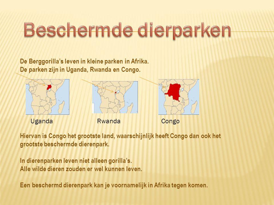 Beschermde dierparken