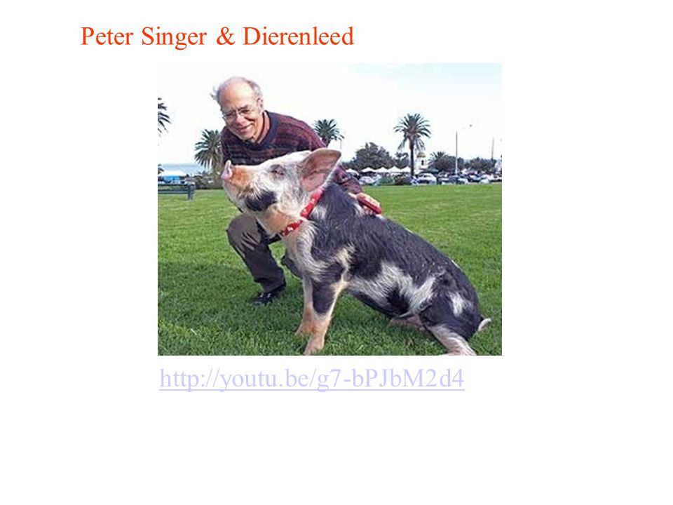 Peter Singer & Dierenleed