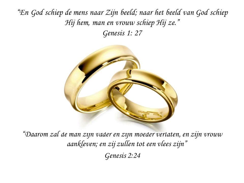En God schiep de mens naar Zijn beeld; naar het beeld van God schiep Hij hem, man en vrouw schiep Hij ze. Genesis 1: 27