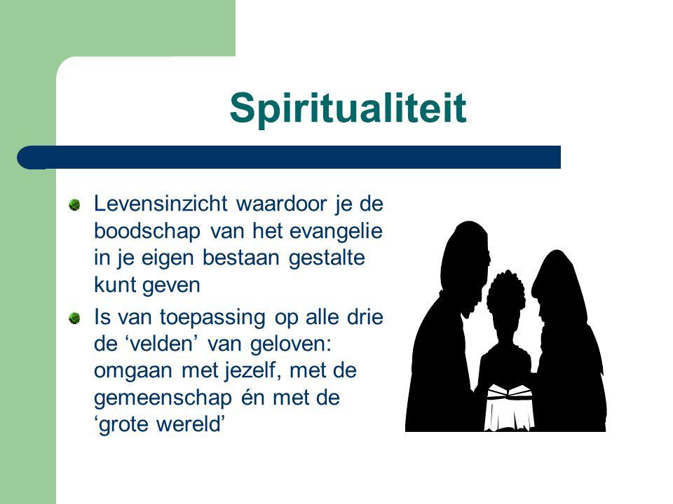 Spiritualiteit Levensinzicht waardoor je de boodschap van het evangelie in je eigen bestaan gestalte kunt geven.