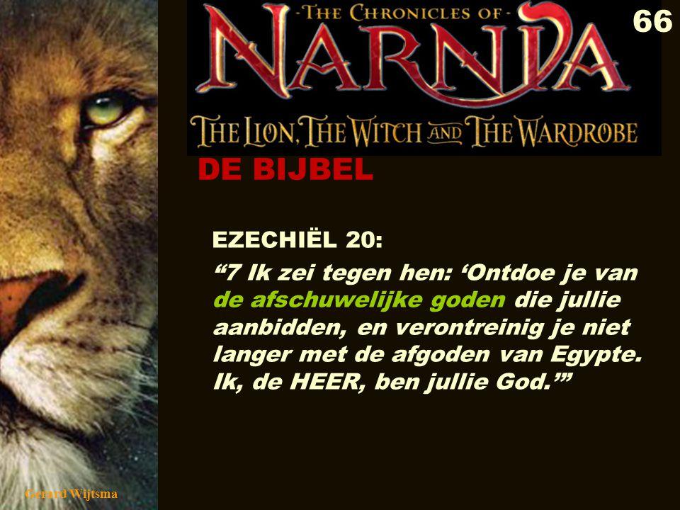 DE BIJBEL EZECHIËL 20: