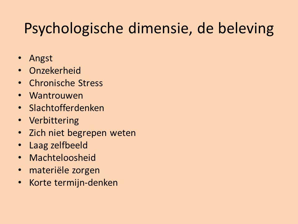 Psychologische dimensie, de beleving