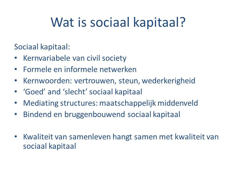 Wat is sociaal kapitaal