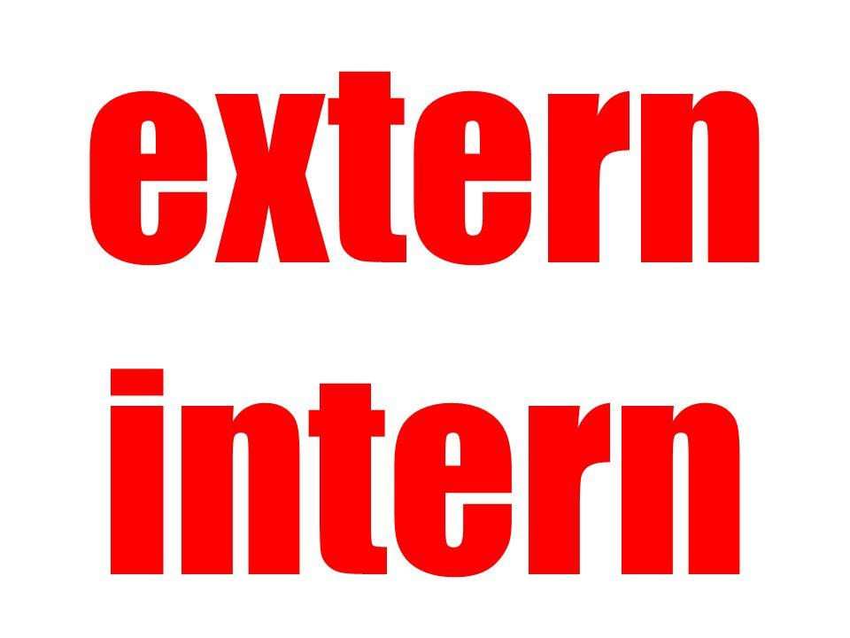 extern intern