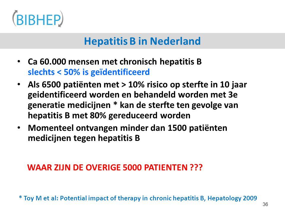 Hepatitis B in Nederland