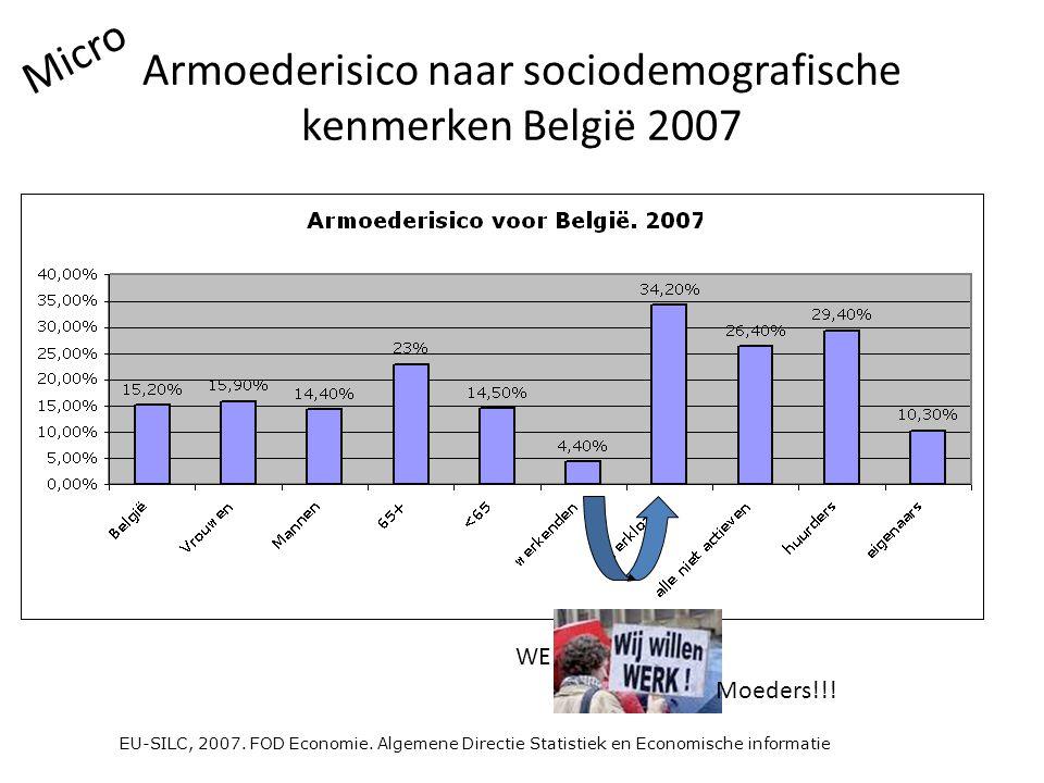 Armoederisico naar sociodemografische kenmerken België 2007