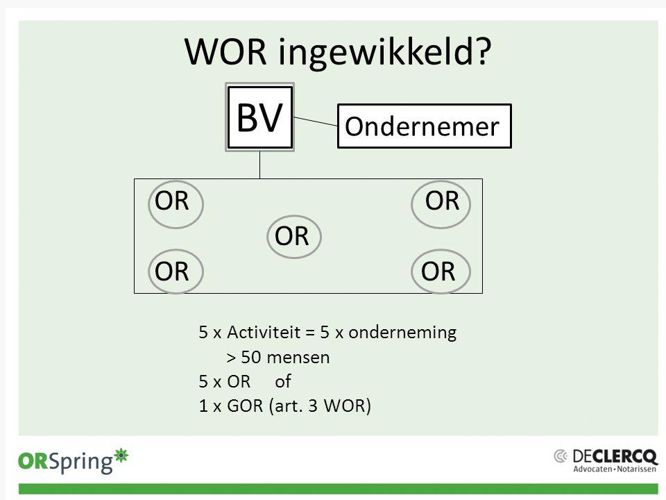 BV WOR ingewikkeld Ondernemer OR OR OR OR OR