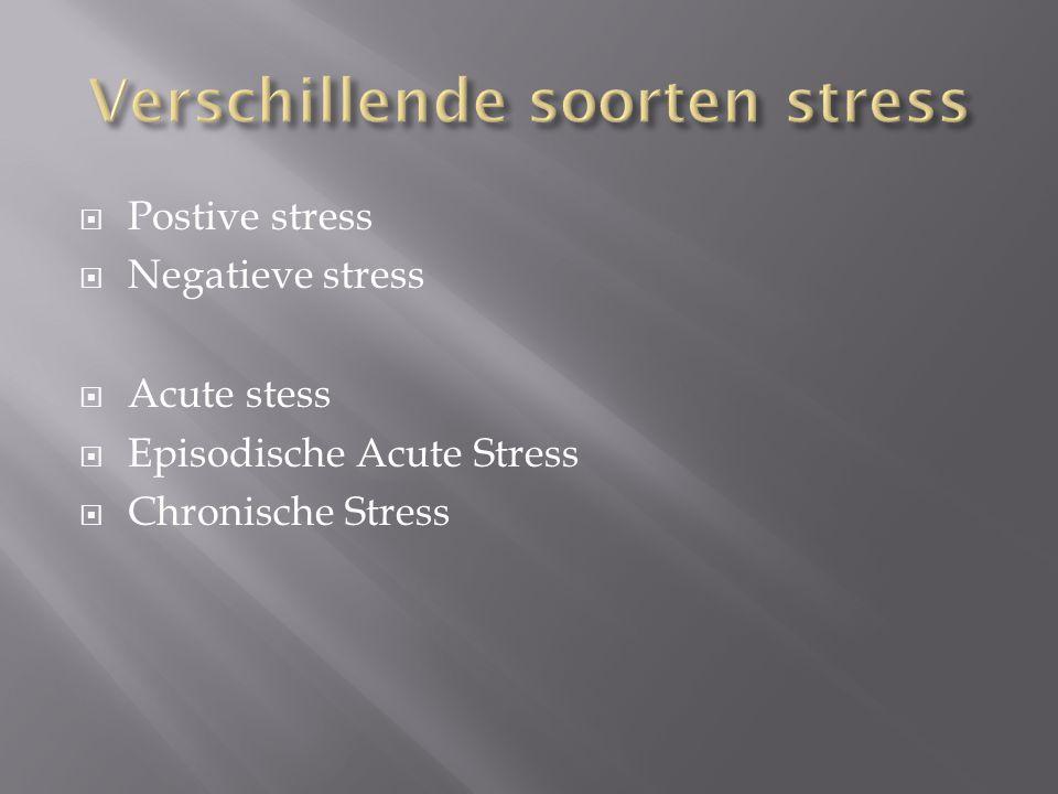 Verschillende soorten stress