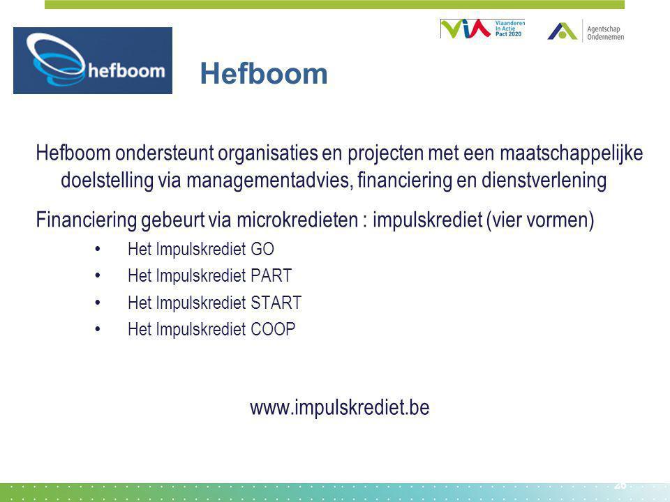 Hefboom Hefboom ondersteunt organisaties en projecten met een maatschappelijke doelstelling via managementadvies, financiering en dienstverlening.