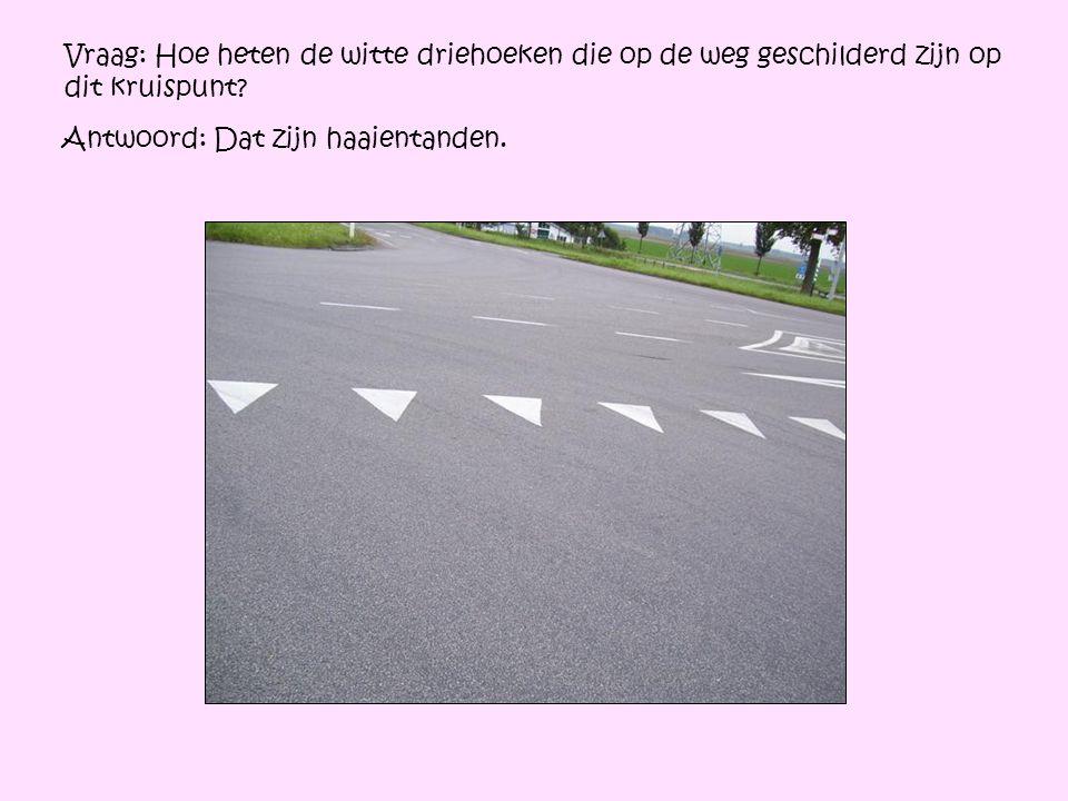 Vraag: Hoe heten de witte driehoeken die op de weg geschilderd zijn op dit kruispunt