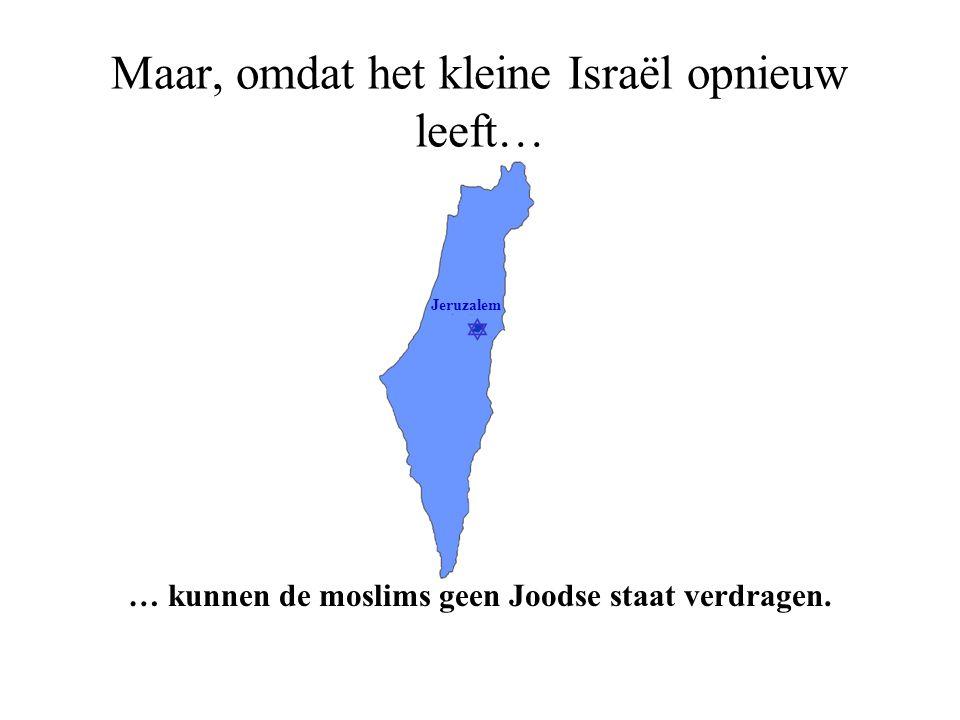 Maar, omdat het kleine Israël opnieuw leeft…
