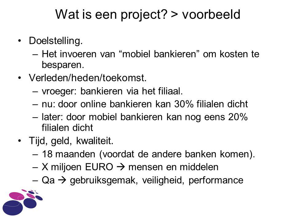 Wat is een project > voorbeeld