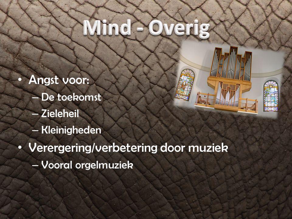 Mind - Overig Angst voor: Verergering/verbetering door muziek