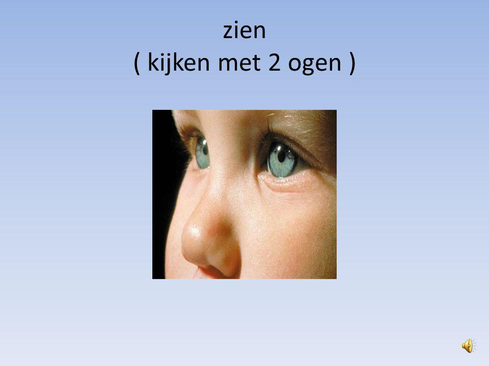 zien ( kijken met 2 ogen )