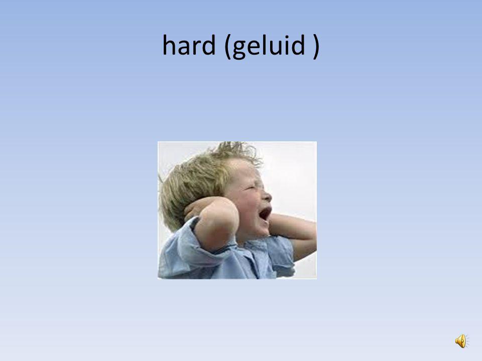hard (geluid )